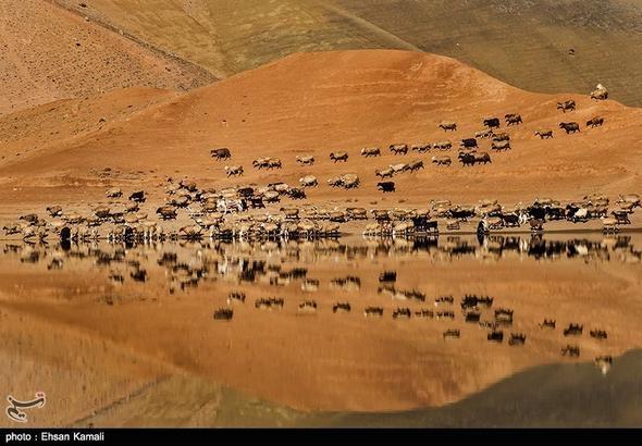 تصاویر : بند خاکی عبدل آباد - خراسان شمالی