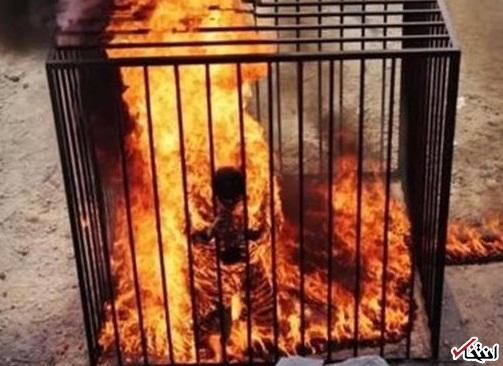 داعش خلبان اردنی را زنده زنده سوزاند+تصاویر