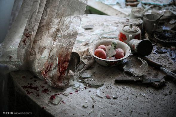 تصاویر : عکسهای برگزیده مسابقه ورلد پرس