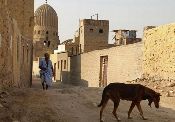 تصاویر : زندگی در شهر مردگان
