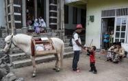 تصاویر : کتابخانه سیار بر پشت اسب