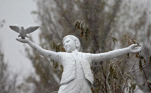 تصاویر : برف پاییزی در تبریز