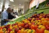 نرخ جدید انواع میوه و صیفیجات/ هر کارتن آناناس چند؟