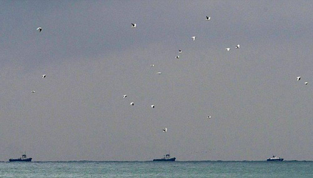 تصاویر : سقوط هواپیمای روسی در سوریه