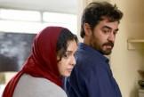 «فروشنده» نامزد اسکار شد / اصغر فرهادی: کاش این خبر را در روزهای بهتری میشنیدم