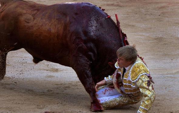 تصاویر : انسانهایی که طعمه حیوانات شدند