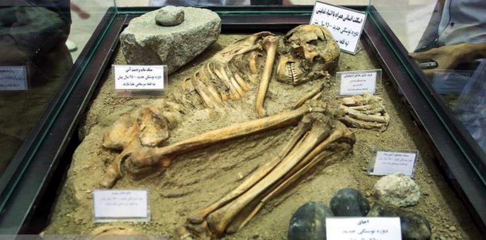 تصاویر : رونمایی از اسکلت 7500 ساله