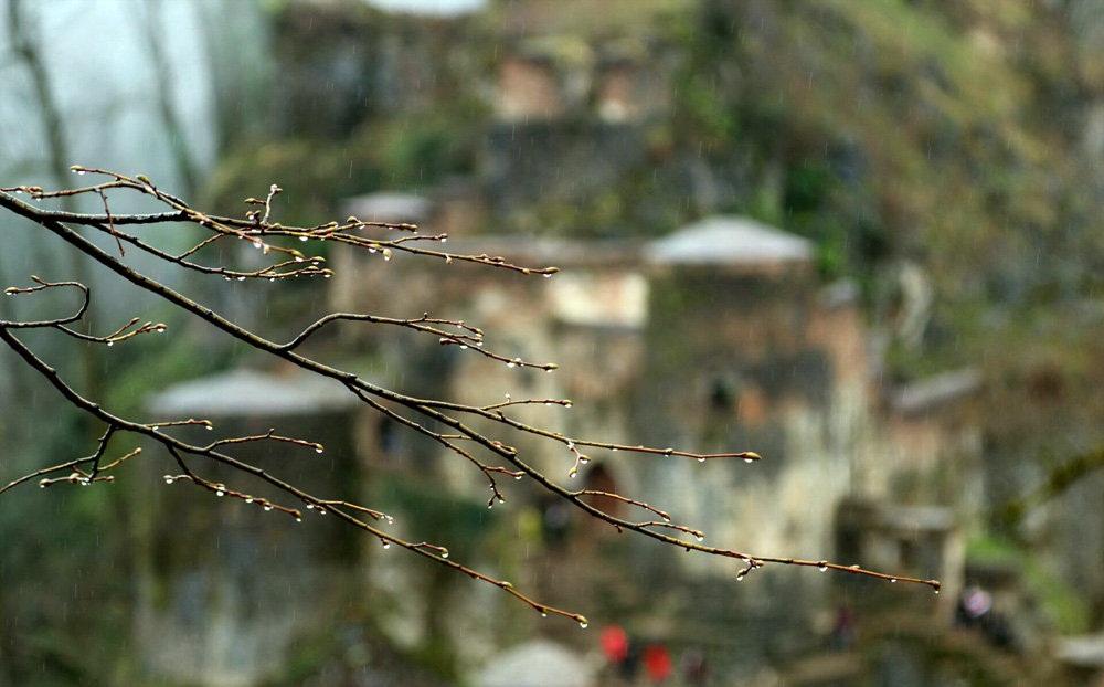 تصاویر : گردشگران نوروزی در قلعه رودخان