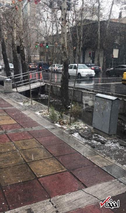 بارش اولین برف زمستانی در تهران؛ باز هم رحمت الهی، آلودگی شهر را کنار زد