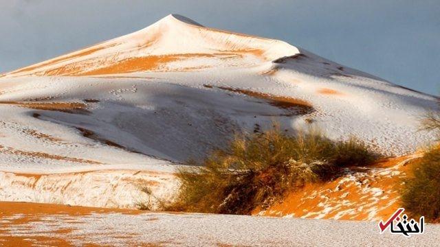 در صحرای آفریقا ۴۰ سانتی متر برف بارید +عکس