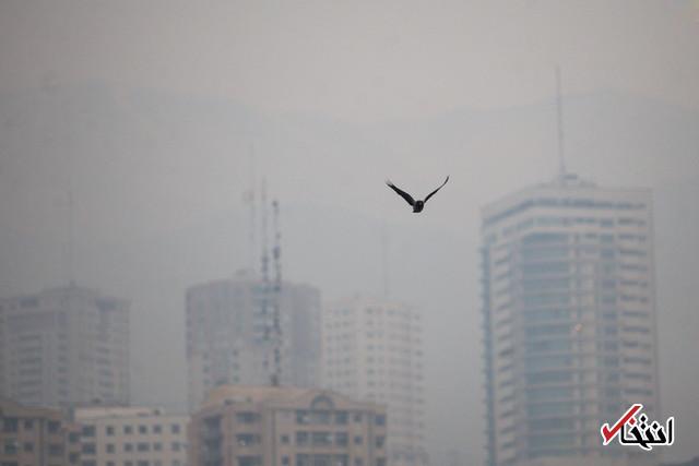 وزارت بهداشت: سال گذشته مرگ ۴۸۱۰ نفر در تهران منتسب به آلودگی هوا بود
