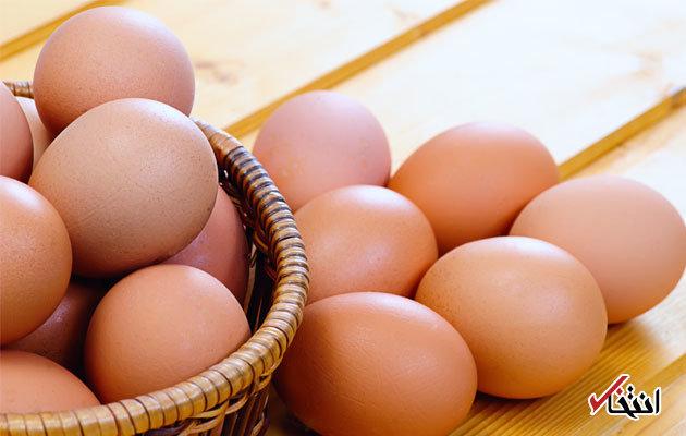 تخم مرغ تا ۱۰ درصد ارزان شد