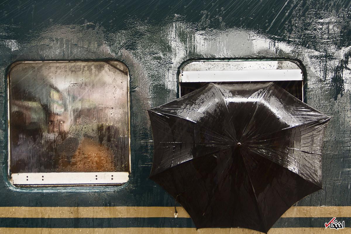 تصاویر : معرفی برترین عکسهای نشنال جئوگرافی در سال ۲۰۱۷
