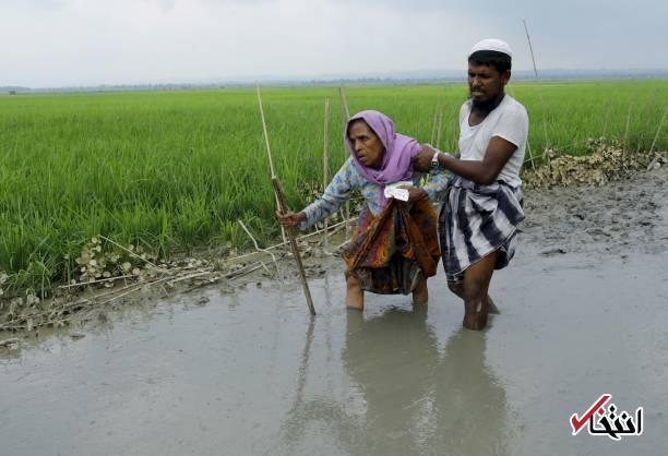 تصاویر : مسلمانان روهینگیا مظلومترین اقلیت جهان