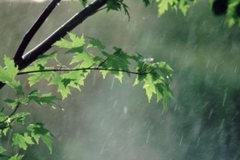 پاییز و آغاز بارندگی در نوار شمالی کشور/ جریانات شمالی در راه است