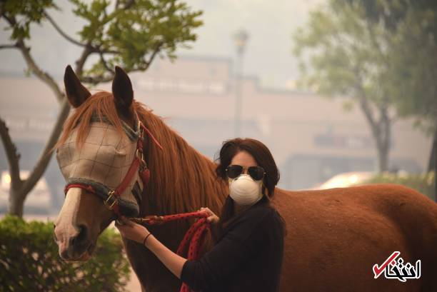 تصاویر : آتشسوزی گسترده در جنگلهای کالیفرنیا