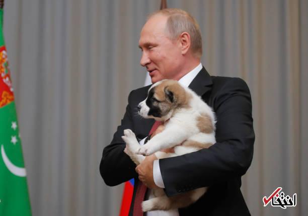 عکس/ رییس جمهور ترکمنستان به پوتین سگ هدیه داد