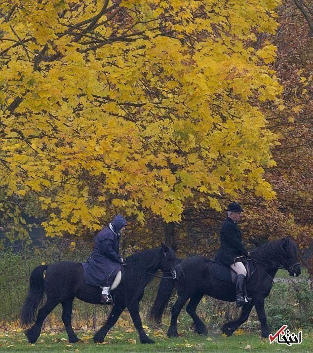 عکس/ اسب سواری ملکه انگلیس در هوای بارانی