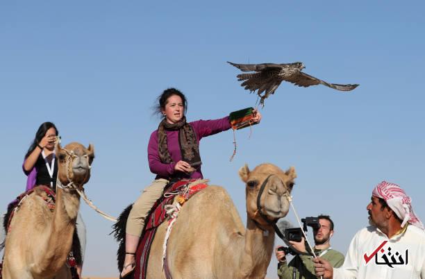 تصاویر : جشنواره بین المللی شکار با شاهین در امارات