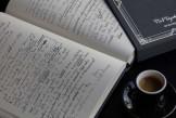 خرید دستنوشتههای یک رمان مشهور با 249 دلار