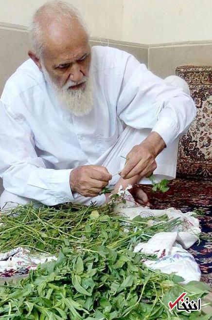 آیت الله حائری شیرازی به روایت تصویر