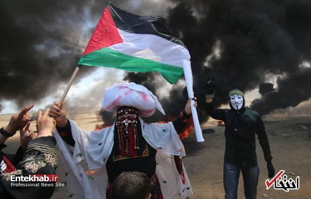 تصاویر : غزه