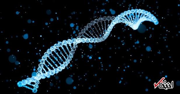 نولد نخستین انسانهای اصلاح ژنتیکی شده  تا 4 ماه آینده / از مصونیت در برابر ایدز تا قدرت بدنی بالا
