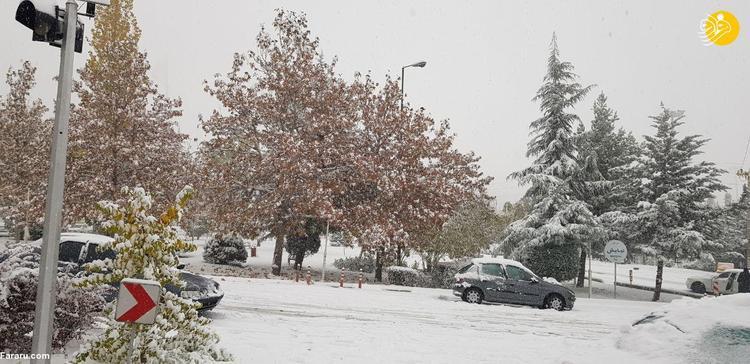 نکات ایمنی و کمکهای اولیه در روزهای برفی و یخبندان