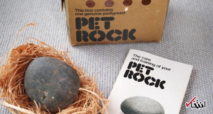 عجیب ترین شیوه ثروتمند شدن در دهه 1970 چه بود؟ / فروش سنگ به عنوان حیوان خانگی!