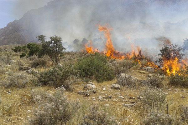 آتش سوزی مزارع عراق توسط داعش