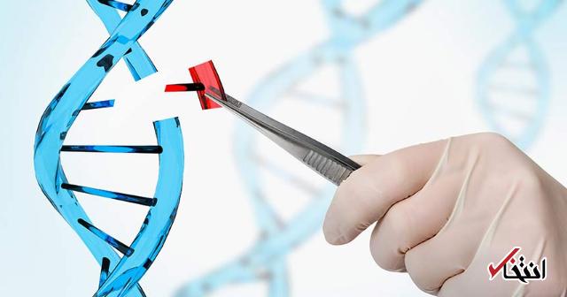 تشخیص DNA با وان حمام چیست؟ / نگاهی به عجیب ترین و پربازدید ترین تبلیغ این روزها
