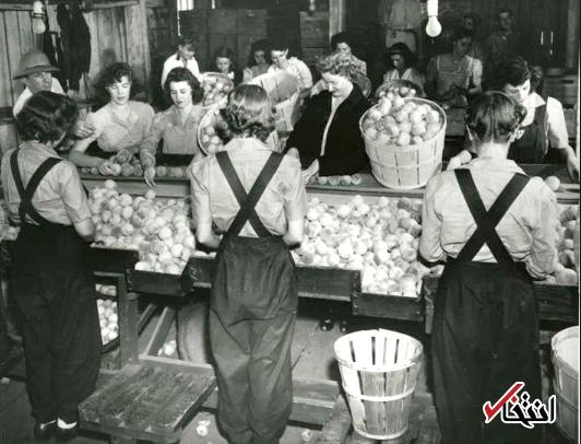 محاسبه موفقیت بمباران های جنگ جهانی دوم بر اساس قیمت پرتقال!