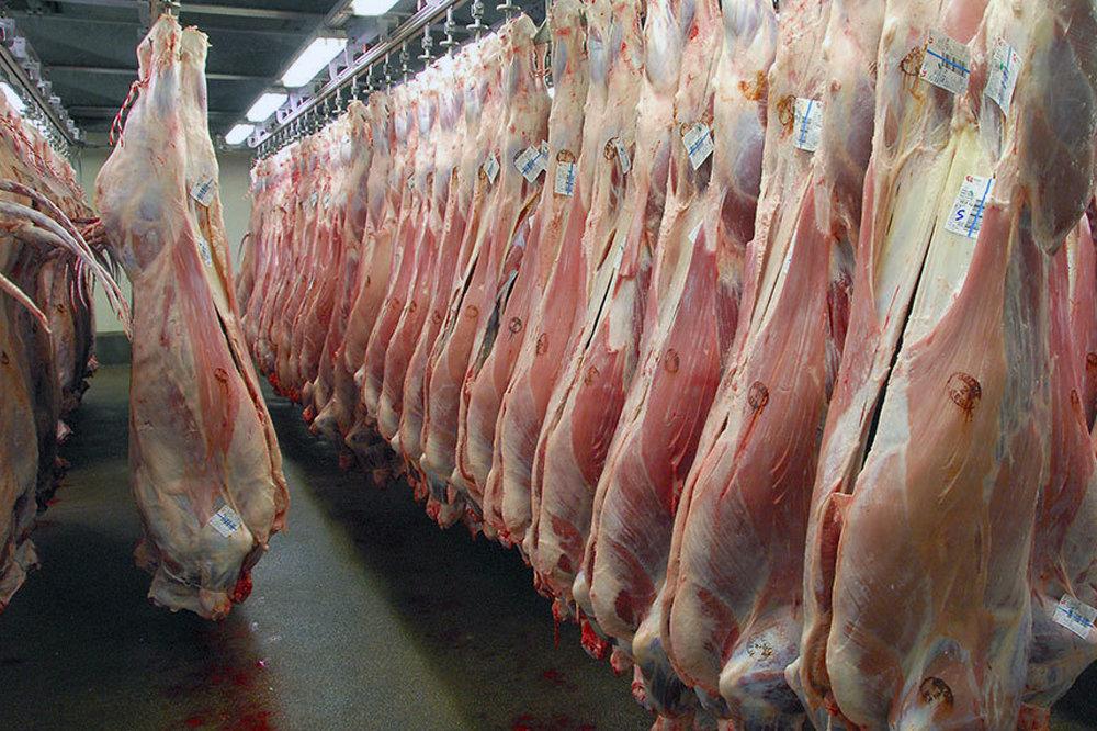 رییس سازمان حج و زیارت: مشکل سردخانه مانع انتقال گوشت های قربانی به ایران شد