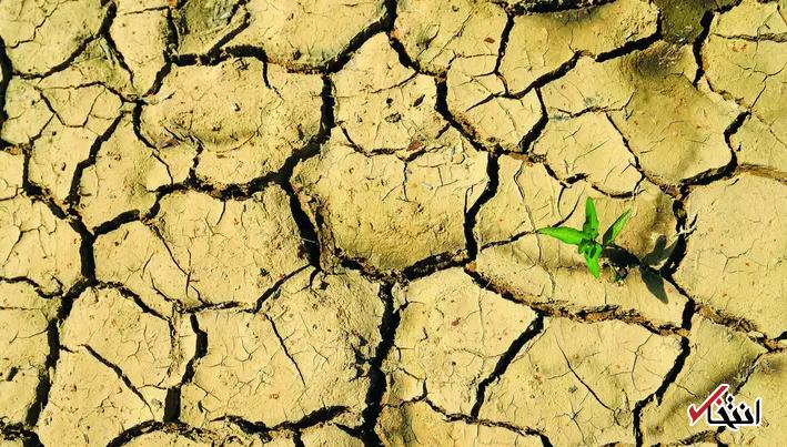 انجمن پزشکی استرالیا تغییرات آب و هوایی را یک فوریت بهداشتی اعلام کرد