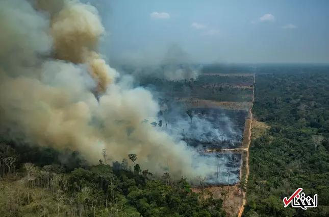 نخست وزیر استرالیا: نمی توانیم به اطفاء حریق آمازون کمک کنیم / جنگلهای آمازون در حوزه ما نیست