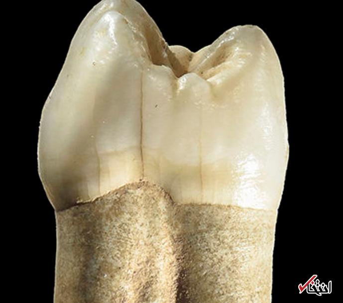 یک غار ایرانی ، یک دندان نئاندرتال و یک راز قتل عصر یخبندان