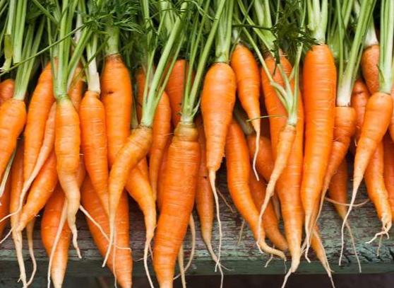 5 خوراکی برای افرادی که می خواهند جوان بمانند