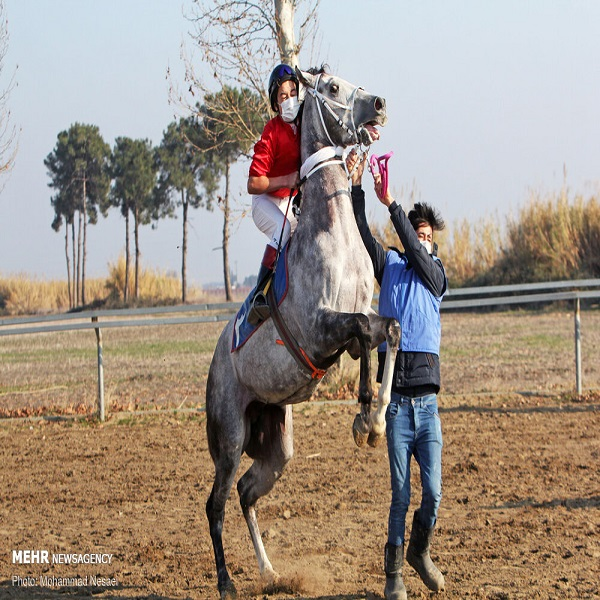 تصاویر: هفته ششم کورس اسب دوانی پاییزه گنبد کاووس