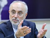 علی اکبر صالحی: روحیه عدم همراهی با ایران در وزارت خارجه عراق بالاست / عراقی ها می خواهند نه سیخ بسوزد نه کباب؛ طوری صحبت می کنند که آدم حیران میماند
