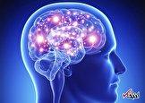 دو زبانه بودن چگونه بر عملکرد مغز تأثیر میگذارد؟