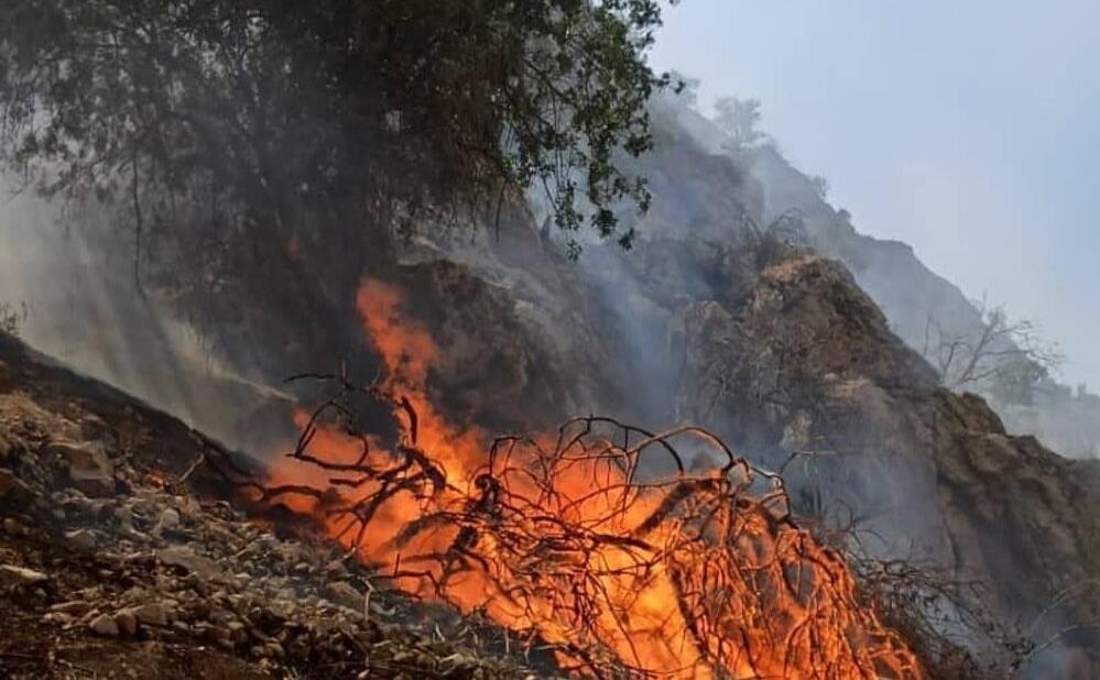 یک دهم از اراضی منطقه حفاظت شده خائیز در آتش سوخت / عدم برخورداری سازمانهای متولی از امکانات مناسب مانع مهار آتش و جلوگیری از سرایت آن شد / لزوم اختصاص دائمی بالگرد با قابلیت حمل آب برای اطفای حریق