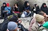 استاندار تهران: ۱.۱ درصد معتادان جمع آوری شده کرونا داشتند / مواد مخدر چند درصد گران شد؟