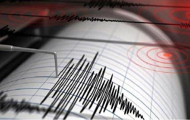 فرار از زلزله یک مصدوم برجای گذاشت