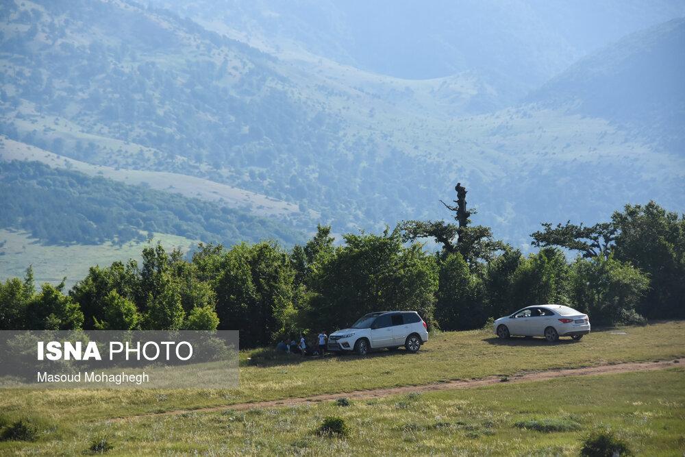 تصاویر: حال و روز جنگل «ابر» شاهرود