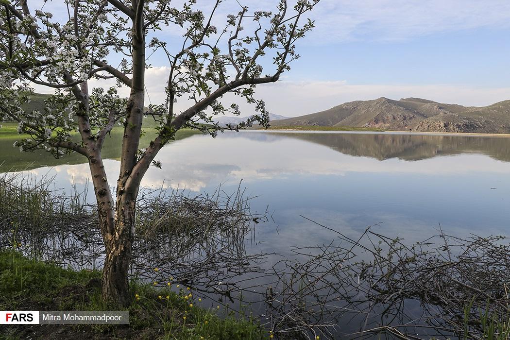تصاویر: طبیعت فوق العاده ی ارسباران