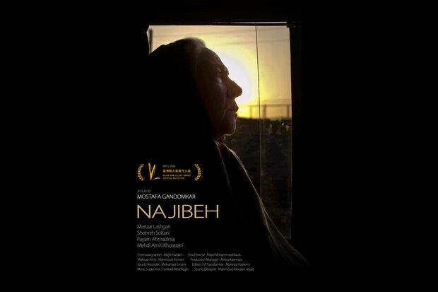 نمایش «نجیبه» در جشنواره فیلم شانگهای/ پوستر منتشر شد
