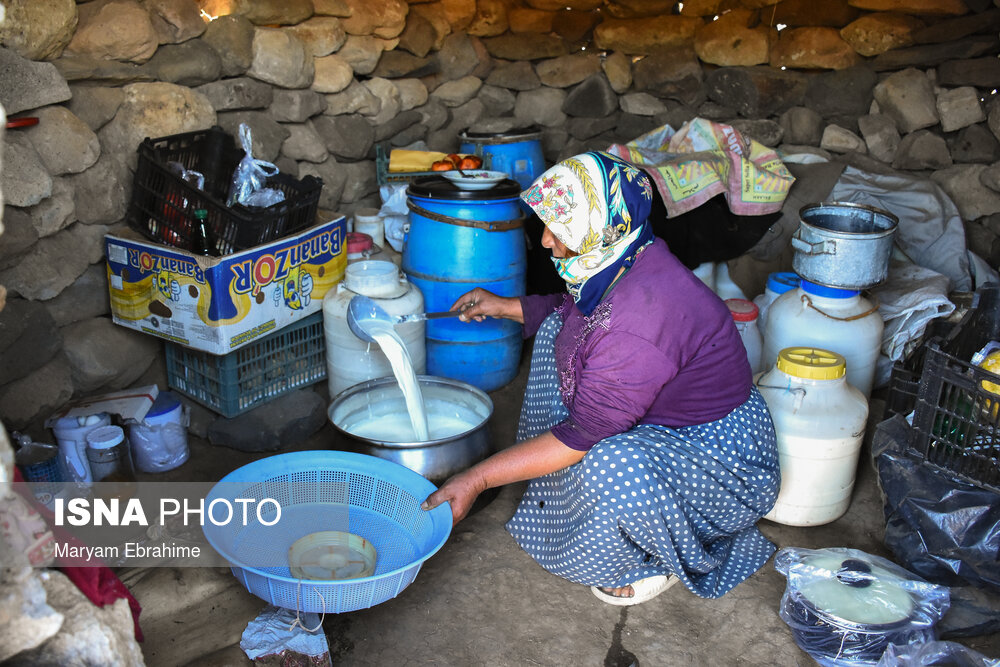تصاویر: عشایر ییلاق «شاهبلاغی»