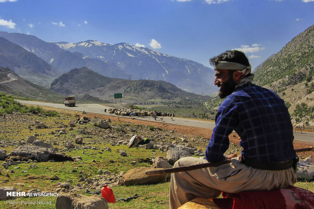 تصاویر: کوچ عشایر؛ سختی ها و زیبایی ها
