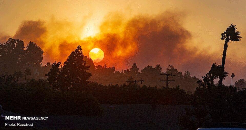 تصاویر: آتشسوزی جنگلهای کالیفرنیا به مناطق مسکونی رسید