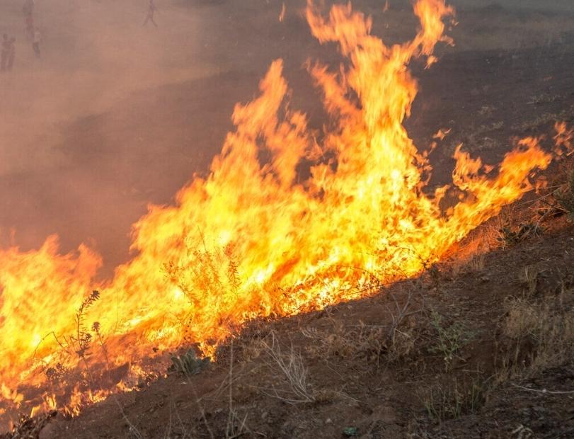 آتش بار دیگر در جنگلهای سالند دزفول شعلهور شد